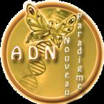 https://cmonbiz.org/wp-content/uploads/2017/10/cropped-logo-ADN-2017-x150.png